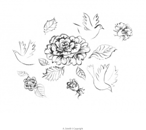 A.Sistelli-illustration-colombes